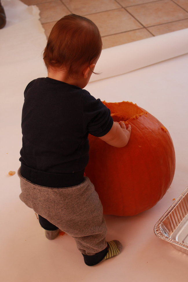 baby-digging-into-pumpkin